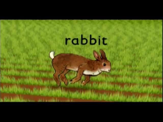 Webby Award Nominee - Rabbit