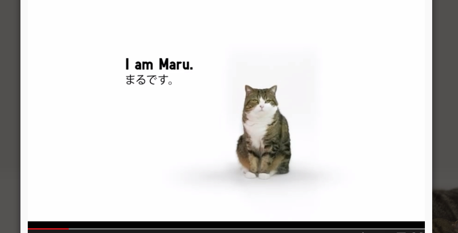 Nominee - UNIQLO – Lucky Cube with Maru
