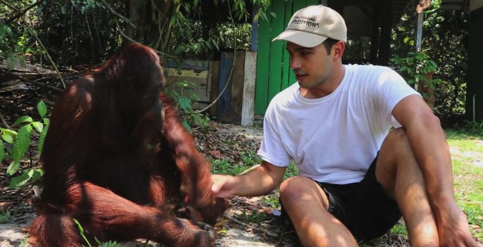 People's Voice - The Dime Traveler – Great Ape Escape