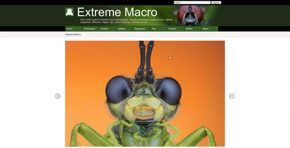 Webby Award Nominee - extreme macro photography