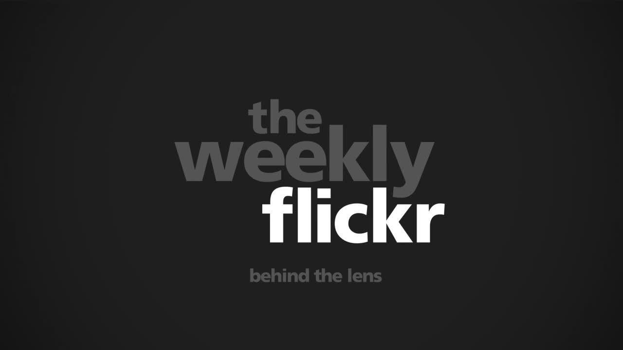 Webby Award Nominee - The Weekly Flickr