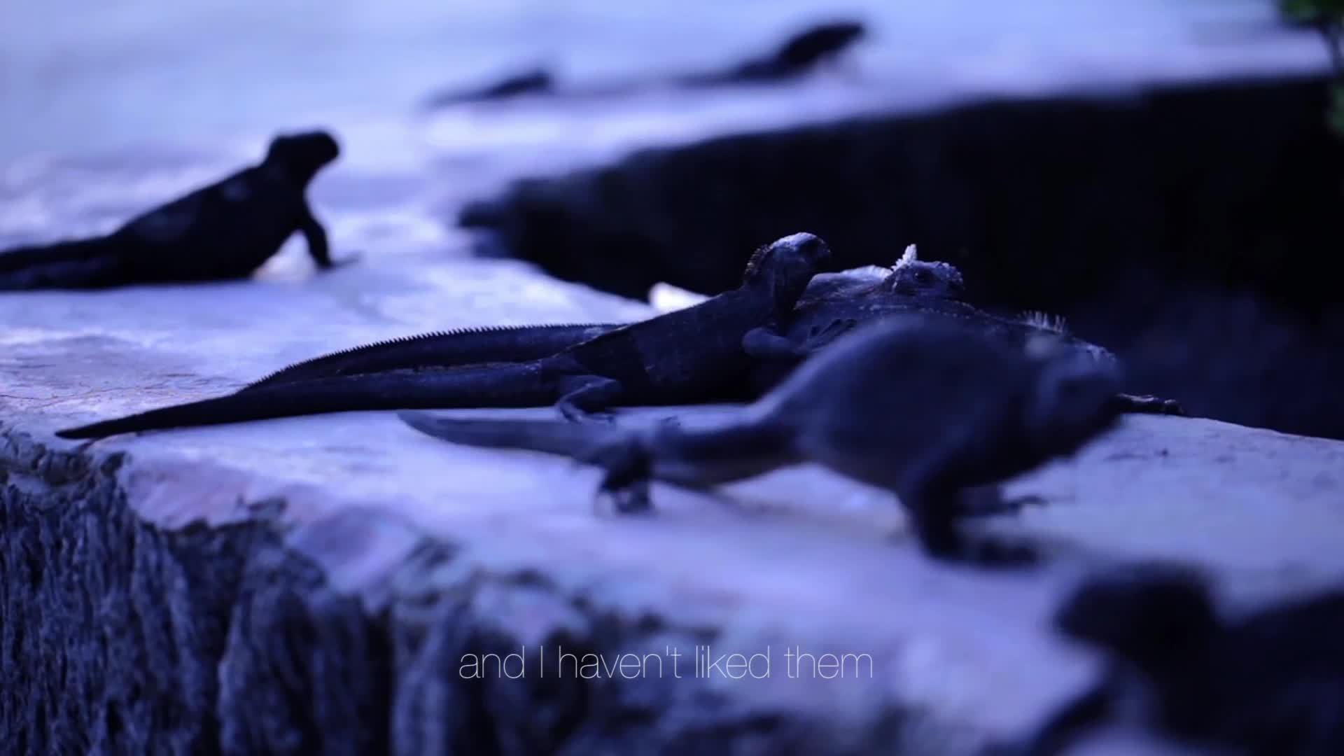 2014 Webby Winner - Living Galapagos