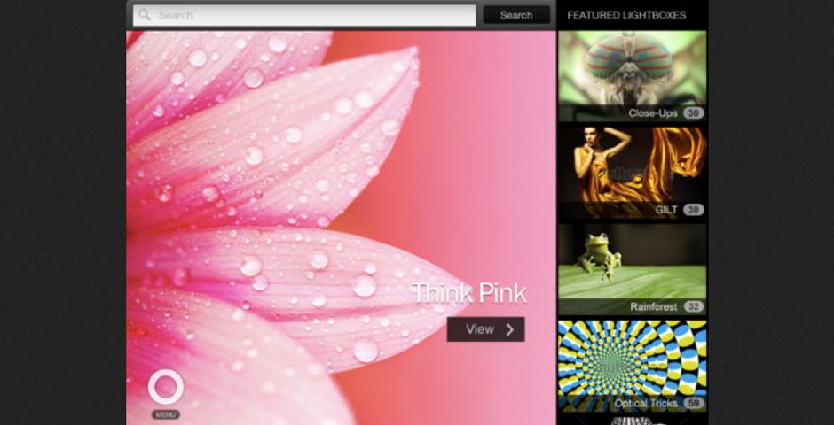 2012 Webby Winner - Shutterstock for iPad
