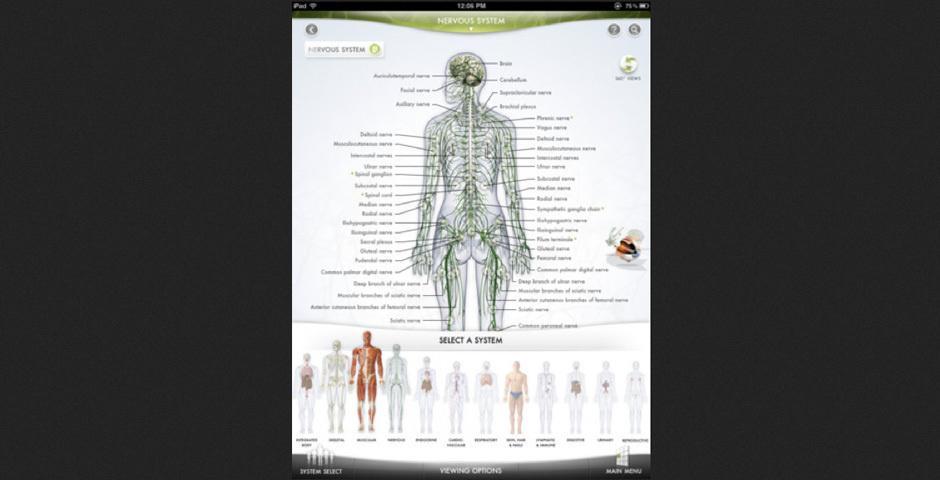 2012 Webby Winner - The Human Body App