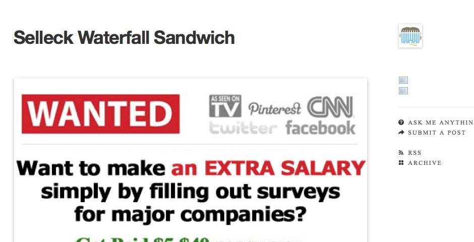 2010 Webby Winner - Selleck Waterfall Sandwich