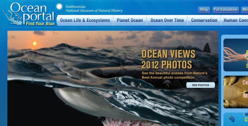 2010 Webby Winner - The Smithsonian Institution / NMNH: The Ocean Portal
