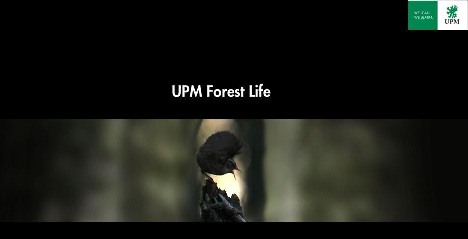 Webby Award Winner - UPM Forest Life