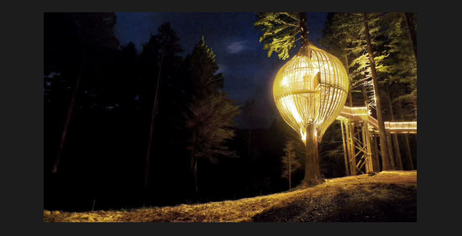 Webby Award Winner - The Yellow Treehouse